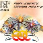 Sesiones Electric Daisy Carnival NY 2013