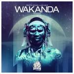 "Dimitri Vegas & Like Mike presentan ""Wakanda"" remixes"