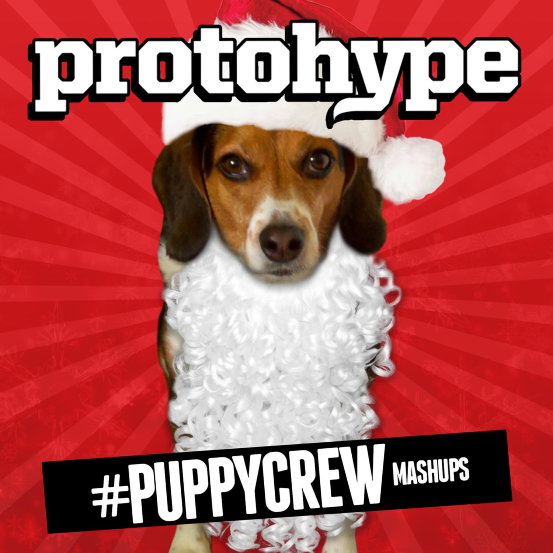 Protohype - #Puppycrew Mashups_nrfmagazine