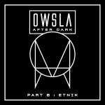 OWSLA After Dark Part 8: Etnik