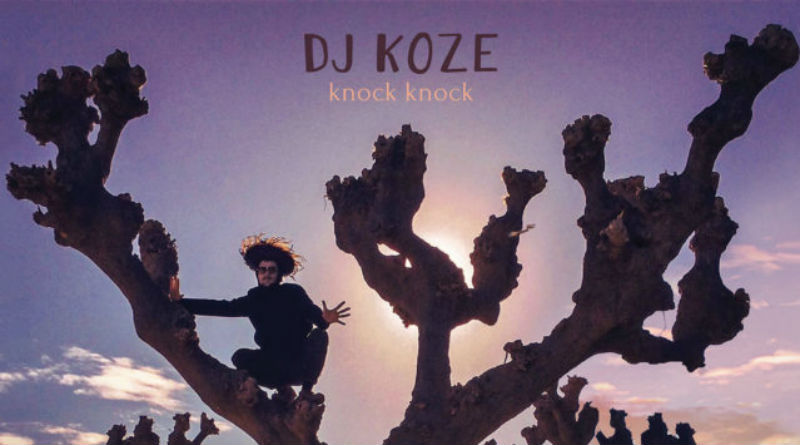 Dj Koze Knock-Knock_nrfmagazine