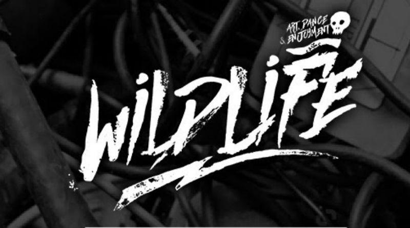 Wildlife_nrfmagazine